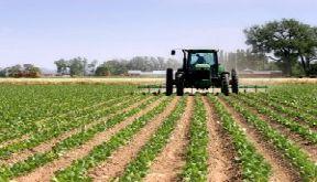 Azerbaijan to create modern agropark